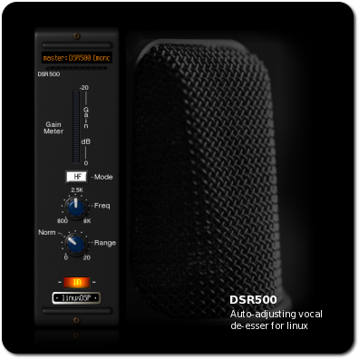 DSR500